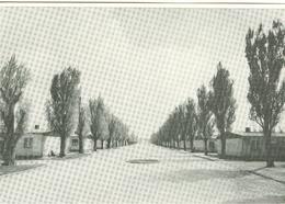 DACHAU - LAGERSTRASSE - WEISS / SCHWARZ -NOT TRAVELED- INTERNATIONALER AUSSCHUSS VON DACHAU - Dachau