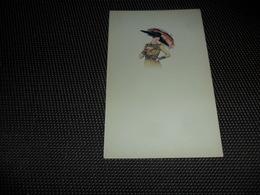 Illustrateur ( 1054 )  Pas De Signature - Illustrateurs & Photographes