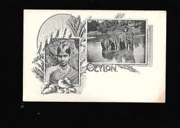 C.P.A. D.UNE CARTE SOUVENIR DE CEYLON. - Sri Lanka (Ceilán)