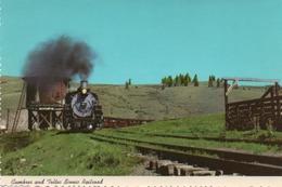 CUMBRES AND TOLTEC SCENIC RAILROAD-NON VIAGGIATA F.G - Aurora (Colorado)
