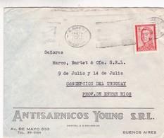1965 COMMERCIAL COVER - ANTISARNICOS YOUNG SRL. CIRCULEE BUENOS AIRES TO ENTRE RIOS - BLEUP - Argentine