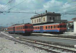 486 FCU ALn 776 Stazione Di Sansepolcro Arezzo Rairoad Treain Railweys Treni - Trains