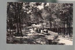 CP (33) Cap Ferret - Le Petit Train - France