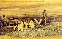 Una Muta Di Cani Nella Russia Del Nord - Russia 1901 - Riproduzione Da Originale - Cartoline