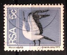 RSA, 1974- Bird, Morus Capensis. Grey Head. Used NH. - Afrique Du Sud (1961-...)