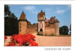 CPM 03 (Allier) Saint-Pourçains-sur-Besbre - Château De Thoury Ou Toury TBE - Andere Gemeenten