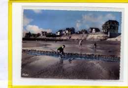 Audresselles. La Plage A Marée Basse. Edit Cim N° 736 - Francia