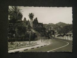 FOTO 1960 SICILIA SICILY MESSINA STRADA PALME - Luoghi