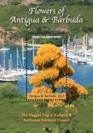 Antigua And Barbuda 2018   Flowers I201901 - Antigua And Barbuda (1981-...)