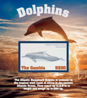Gambia 2018  Fauna  Atlantic Humpback Dolphin  I201901 - Gambia (1965-...)