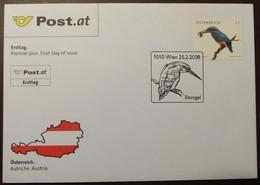 Brief Österreich   2008   Eisvogel  #cover 4828 - 1945-.... 2. Republik