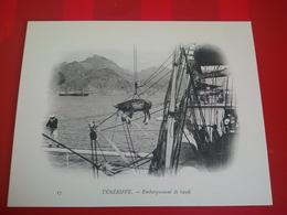 TENERIFE EMBARQUEMENT DE BOEUFS - Tenerife