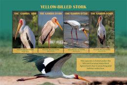 Gambia 2019 Fauna  Yellow-billed Stork  , Birds  I201901 - Gambia (1965-...)