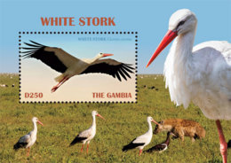 Gambia 2019 Fauna White Stork ,bird  I201901 - Gambia (1965-...)