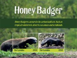Gambia 2019 Fauna Honey Badger , I201901 - Gambia (1965-...)