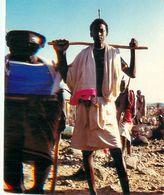 Cpm DJIBOUTI - Guerrier Djiboutien - Djibouti