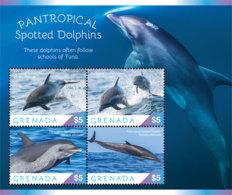 Grenada  2019  Fauna  Pantropical Spotted Dolphin  I201901 - Grenada (1974-...)