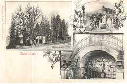 CPA MOSELLE.SAINT-LIVIER. - Francia