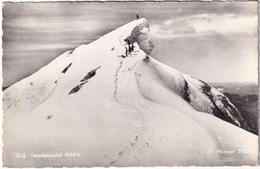 Groß - Venedigergipfel 3660 M  - ( Austria) - Alpinisme -  1962 - Zell Am See