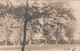 Jemelle , Photocarte  1921 , Panorama + Vache , RARE - Rochefort