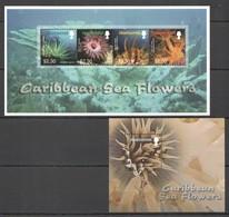 K1133 MONTSERRAT MARINE LIFE FLORA CARIBBEAN SEA FLOWERS BL+KB MNH - Vie Marine