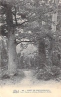 ARBRE Tree Bome - 77 - FONTAINEBLEAU : Les 3 Vernet Ou 3 Frères ( Vallée De La Solle ) - CPA - Boom Albero árbol - Bäume