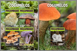MOZAMBIQUE 2019 MNH Mushrooms Pilze Champignons M/S+S/S - OFFICIAL ISSUE - DH1925 - Funghi