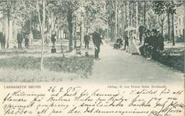 Jönköpings Län 1905; Lannaskede Brun - Circulated. (H. Von Porat - Hvetlanda) - Zweden