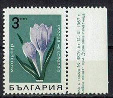 *Bulgarien 1968 // Mi. 1793 ** - Pflanzen Und Botanik