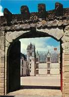Dép 44 - Chateaux - Haute Goulaine - Château De Goulaine - Portail D'entrée - Semi Moderne Grand Format - Bon état - Haute-Goulaine