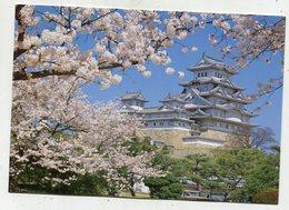 JAPAN - AK 354537 Hyogo - Himeji Castle - Japan