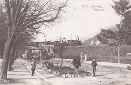 Bienne - Pasquartier Mit Doppellok-Dampfzug - 1912        (P-173-61020) - BE Berne