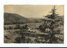 Wellin  - Panorama Vers Neupont - Père Finet - Editions Arduenna - Circulé 1957 - Wellin