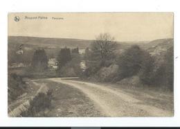 Halma- Neupont - Panorama - Circulé 1923 - Nels - Wellin