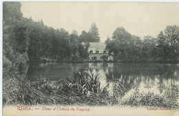 Wellin -  Etang Et Château Du Neupont - Editeur Banneux - Circulé Vers Allemagne - SUPER - Wellin