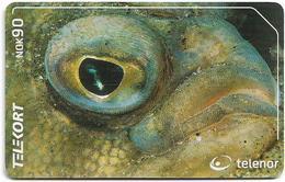 Norway - Telenor - Sandflyndre Fish - N-204 - 04.2001, 3.000ex, Used - Norwegen