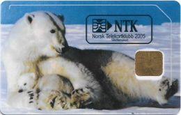 Norway - Telenor - Polar Bear  - NTK-3 - (MEDLEMSKORT 2005 ISSUE), 02.2005, 300ex, Used - Norvège