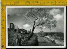Agrigento Archeologica - Agrigento