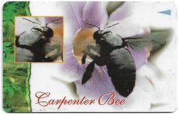 Singapore - Bugs - Carpenter Bee - 113SIGA - 1997, Used - Singapore