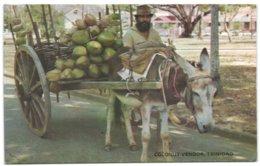 Coconut Vendor - Trinidad - Trinidad