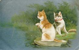 CATS - 2 CATS FISHING  1906 C526 - Cats