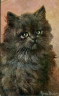 CATS - BROWNIE By ROSA BEBB 1919 C504 - Katten
