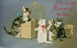 CATS - CAT TEACHING KITTENS C530 - Cats