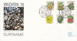 SURINAM 1978 - FDC Mit MiNr: 838-843 Komplett - Suriname
