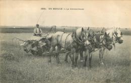 EN BEAUCE LA MOISSONNEUSE - France