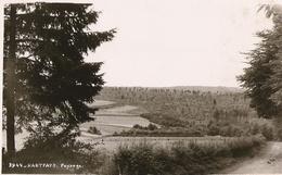 Haut-Fays - Paysage  - Mosa 3944 - Texte Et Signature Bichette 28/08/1952 - SUPER - Daverdisse