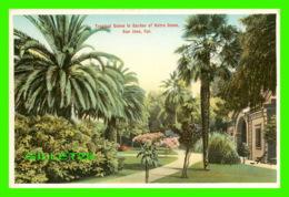 SAN JOSE, CA - TROPICAL SCENE IN GARDEN OF NOTRE DAME - M. RIEDER - - San Jose