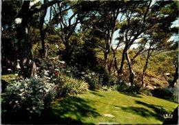 France La Cote D'Azur Jardin Dans La Pinede - Provence-Alpes-Côte D'Azur