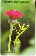 SOUTH KOREA - Insect, Praying Mantis(reverse Letter K), Korea Telecom W5000, 04/97, Used - Corea Del Sud