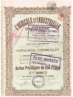 Titre Ancien - L'Agricole Et Industrielle D'Argentine - Société Anonyme -Titre De 1922 - Agriculture